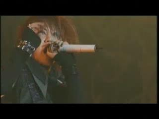 the GazettE - Carry?