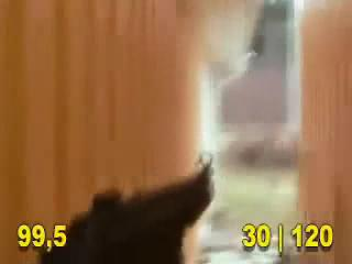 counter strike REAL