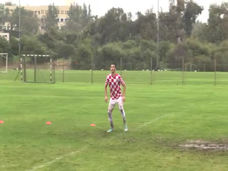 Crstino Ronaldo -  Israeli replacement big star  -  Rafael Danel